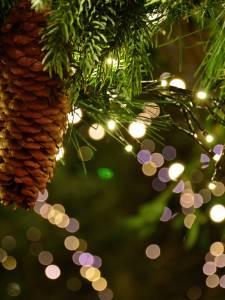 [ ANNULÉ ] Noël chez l'abbé Pierre
