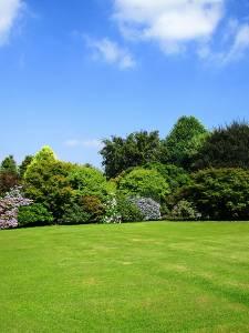 Visite du Jardin du Mesnil
